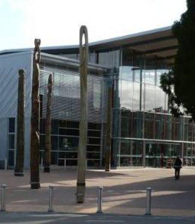 Whangarei Library - Teaser Image